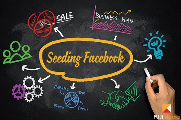 Seeding Facebook Là Gì, Làm Sao Để Seeding Hiệu Quả