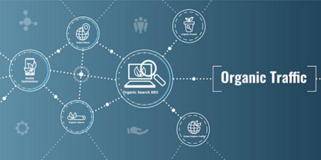 Giải Pháp Tăng Organic Traffic Cho Website Mỗi Ngày